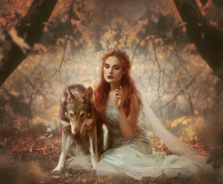 Unter Wölfen – Fotoshootings mit Wolfshunden (Gastbeitrag)